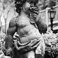 Courtyard Statue of a Cherub French Quarter New Orleans Black and White Print by Shawn O'Brien