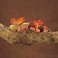 Fairies Print by Anne Geddes