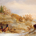 Fox and Pheasants in Winter Poster by Anonymous
