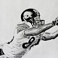 Hines Ward Diving Catch  Poster by Bryant Luchs