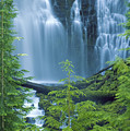 Lower Proxy Falls Print by Greg Vaughn - Printscapes