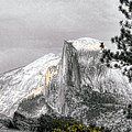 Yosemite Half Dome Poster by Chuck Kuhn