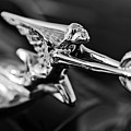 1934 Packard Hood Ornament 2 Print by Jill Reger