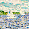 Sailing on Casco Bay Poster by Collette Hurst