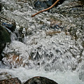Wild Basin White Water Print by Brent Parks
