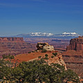 Canyonlands National Park Print by Mark Smith