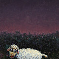 A sheep in the dark Poster by James W Johnson