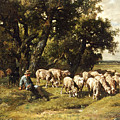 A shepherd and his flock Print by Charles Emile Jacques