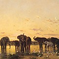 African Elephants Print by Charles Emile de Tournemine