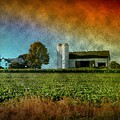 Amish Country Farm Print by Bill Cannon