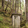 An Outhouse In A Moss Covered Forest Print by Michael Melford