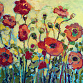 Anitas Poppies Print by Jennifer Lommers