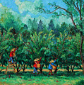 Apple Pickers  LittleTree Orchard  Ithaca NY Poster by Ethel Vrana