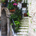 Archway and Stairs Print by Marilyn Hunt