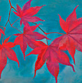 Autumn Crimson Print by William Jobes