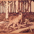 Autumn Deer Print by Andrew Siecienski