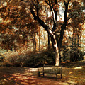 Autumn Repose Poster by Jessica Jenney