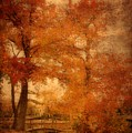 Autumn Tapestry - Lake Carasaljo Poster by Angie Tirado