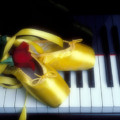 Ballet shoes on piano keys Print by Garry Gay