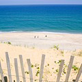 beach fence and ocean Cape Cod Print by Matt Suess