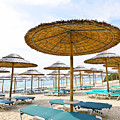 Beach umbrellas and chairs on sandy seashore Print by Elena Elisseeva