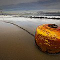 beached mooring buoy Print by Meirion Matthias