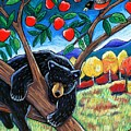Bear in the Apple Tree Poster by Harriet Peck Taylor
