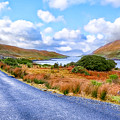 Beautiful Irish Countryside of County Galway Poster by Mark E Tisdale