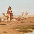 Bedouin in the Desert Poster by Frederick Goodall