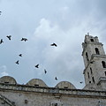 Birds flying above the basilica and the monastery of Saint Francis of Assisi Poster by Sami Sarkis