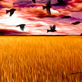Birds Over Wheat Field Poster by Anthony Caruso