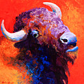 Bison Attitude Poster by Marion Rose