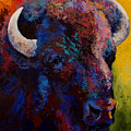 Bison Head Study Poster by Marion Rose