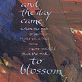 Blossom II Poster by Judy Dodds