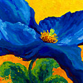 Blue Poppy Poster by Mmarion Rose