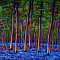 Bluebell Wood Poster by JOHNATHAN HARRIS