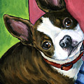 Boston Terrier Looking Up Poster by Dottie Dracos