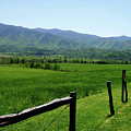 Cades Cove View Poster by Nancy Mueller
