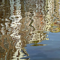 Canal House Reflections Poster by Joan Carroll