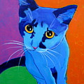 Cat - Kitten Blue Poster by Alicia VanNoy Call