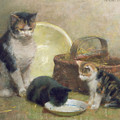 Cat and Kittens Print by Walter Frederick Osborne