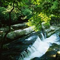 Clare Glens, Co Clare, Ireland Print by The Irish Image Collection