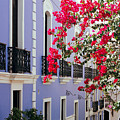 Colorful Balconies of Old San Juan Puerto Rico Print by George Oze