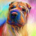 Colorful Shar Pei Dog portrait painting  Print by Svetlana Novikova