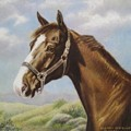 Commission Chestnut Horse Print by Dorothy Coatsworth