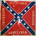 CONFEDERATE FLAG Print by Granger