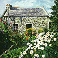 Cottage of Stone Print by David Lloyd Glover