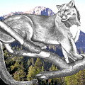 Cougar Mountain Poster by Russ  Smith