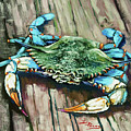 Crabby Blue by Dianne Parks