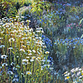 Daisies and Shades of Blue Print by Steve Spencer